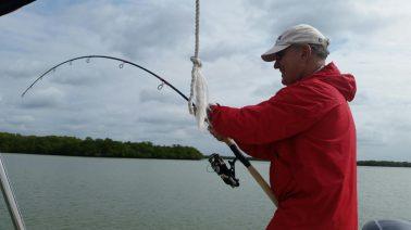 Shark bending rod