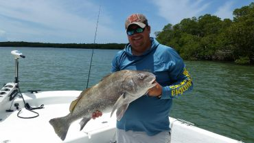 Perry Black Drum 2