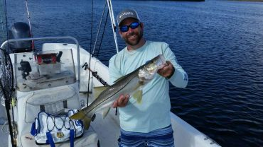 Snook Andrew 2