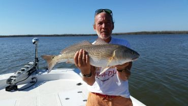 Andrew's Redfish