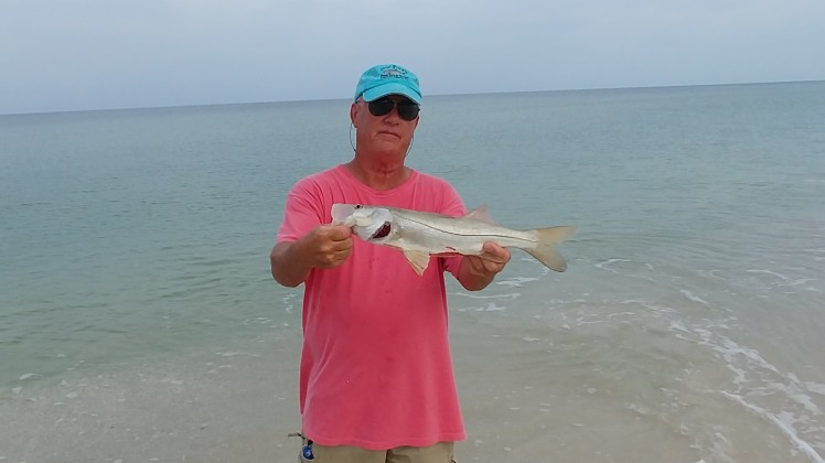Beach Snook